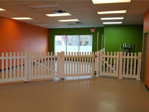 Doggie Daycare in Calgary - Photo 1