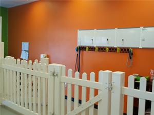 Doggie Daycare in Calgary - Photo 3