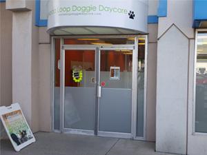 Doggie Daycare & Spa in Calgary